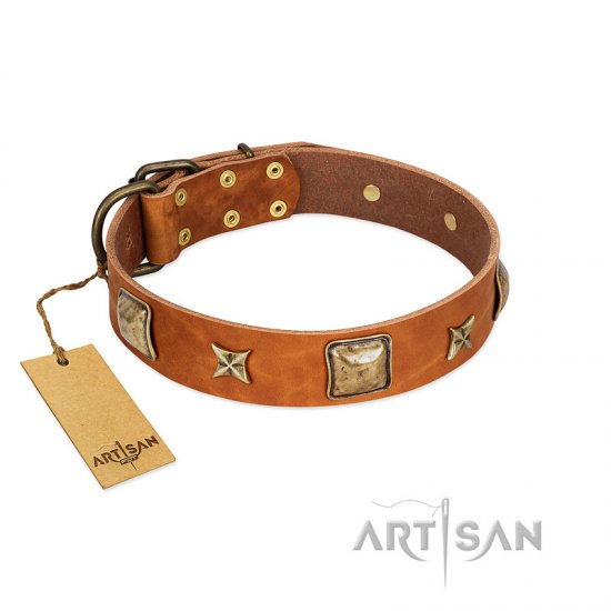 """Celtic Tunes"" FDT Artisan Tan Leather Bullmastiff Collar Adorned with Stars and Squares"