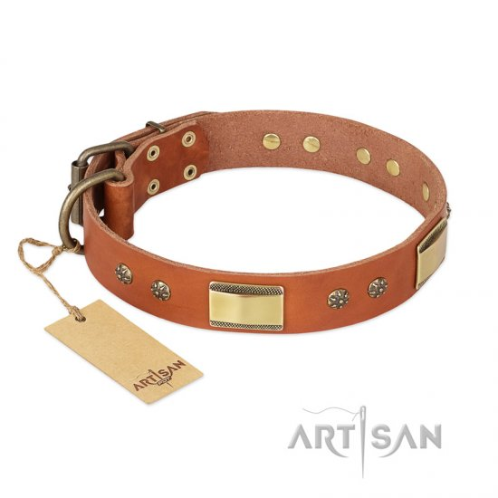 """Enchanting Spectacle"" FDT Artisan Tan Leather Bullmastiff Collar with Old Bronze Look Plates and Round Studs"