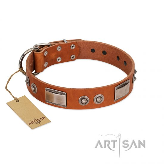 """Pawsy Glossy"" FDT Artisan Exclusive Tan Leather Bullmastiff Collar 1 1/2 inch (40 mm) wide"