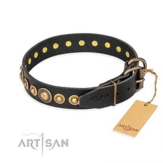 """Gold Mine"" FDT Artisan Black Leather Bullmastiff Collar with Amazing Bronze-Plated Round Studs"