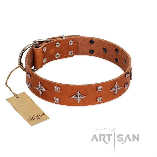 """Tawny Beauty"" FDT Artisan Tan Leather Bullmastiff Collar Adorned with Stars and Tiny Squares"
