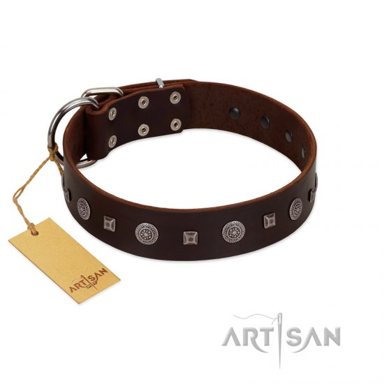 """Pure Sensation"" Exclusive FDT Artisan Brown Leather Bullmastiff Collar with Fancy Brooches and Studs"