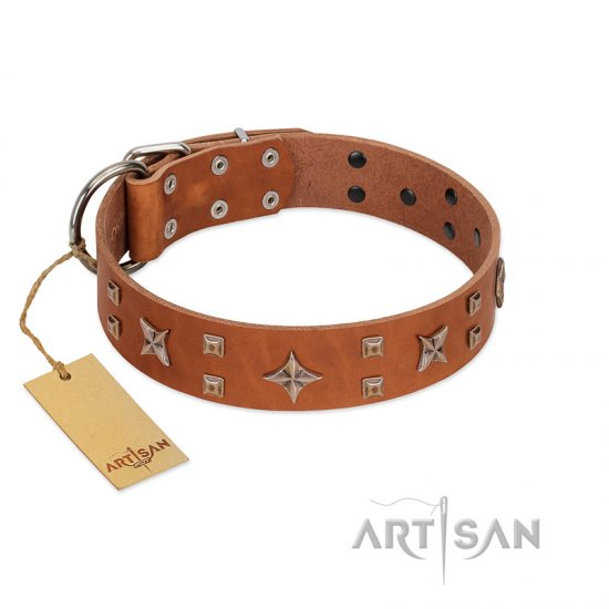 """Dreamy Gleam"" FDT Artisan Tan Leather Bullmastiff Collar Adorned with Stars and Squares"