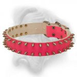 Delicate Pink Leather Bullmastiff Collar with Nickel Spikes