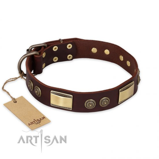 """Golden Stones"" FDT Artisan Brown Leather Bullmastiff Collar with Old Bronze Look Plates and Circles"