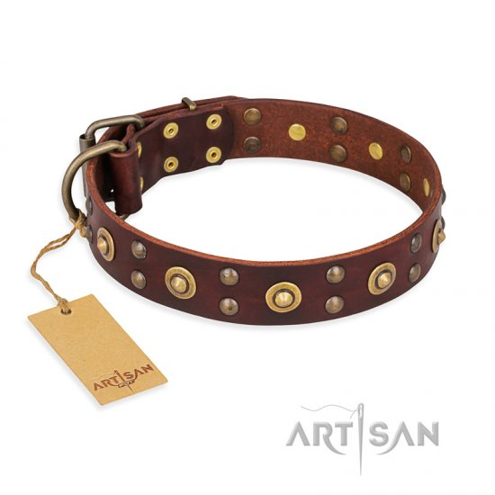 """Caprice of Fashion"" FDT Artisan Brown Leather Bullmastiff Collar with Round Decorations"