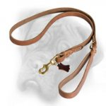 Leather Braided Dog Leash 1/4 inch for Bullmastiff