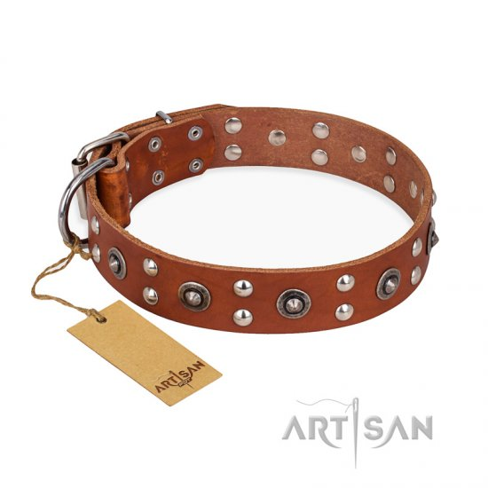 """Silver Elegance"" FDT Artisan Decorated Leather Bullmastiff Collar with Old Silver-Like Plated Studs and Cones"