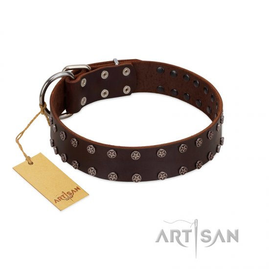 """Star Party"" Handmade FDT Artisan Brown Leather Bullmastiff Collar with Silver-Like Studs"