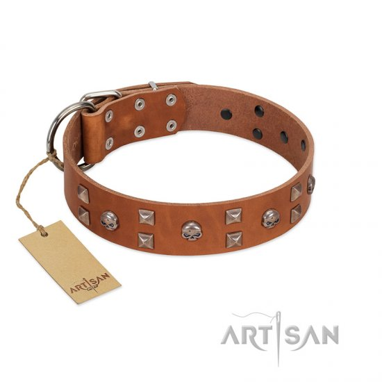 """Enchanted Skulls"" FDT Artisan Tan Leather Bullmastiff Collar with Chrome Plated Skulls"