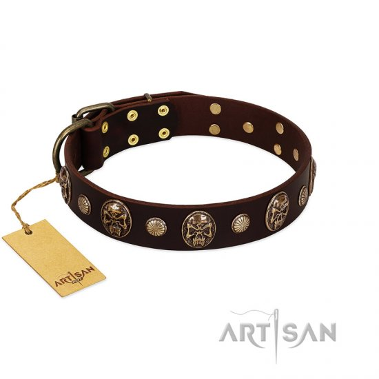 """Snazzy Paws"" FDT Artisan Brown Leather Bullmastiff Collar Adorned with Conchos and Medallions"