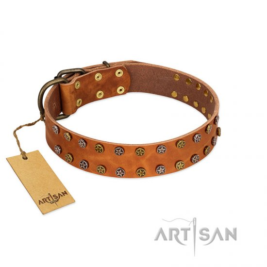 """Walk and Shine"" FDT Artisan Tan Leather Bullmastiff Collar with Antiqued Studs"