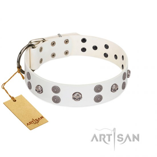 """Edgy Look"" FDT Artisan White Leather Bullmastiff Collar with Silver-like Skulls"
