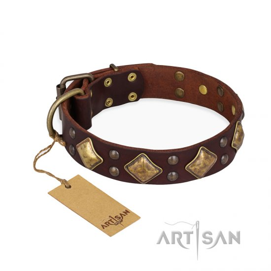 """Golden Square"" FDT Artisan Brown Leather Bullmastiff Collar with Large Squares"