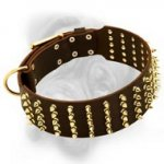 Stylish Leather Bullmastiff Collar with 5 Rows of Brass Spikes