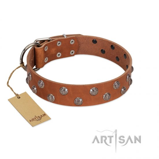 """Waltz of the Flowers"" Handmade FDT Artisan Tan Leather Bullmastiff Collar with Chrome-plated Engraved Studs"