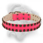 """Raving Beauty"" Pink Studded Collar for Female Bullmastiff"