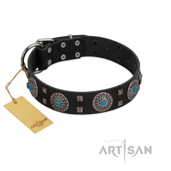 """Boundless Blue"" FDT Artisan Black Leather Bullmastiff Collar with Chrome Plated Brooches and Square Studs"