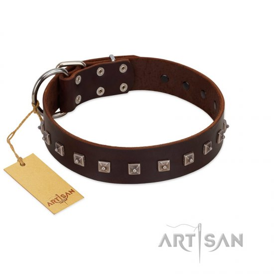 """Kingly Grace"" FDT Artisan Brown Leather Bullmastiff Collar with Silver-like Dotted Studs"