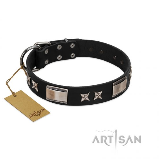 """Pitch Dark"" FDT Artisan Black Leather Bullmastiff Collar with Stars and Plates - Click Image to Close"