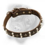 Chic leather dog collar with pyramids and studs for Bullmastiff