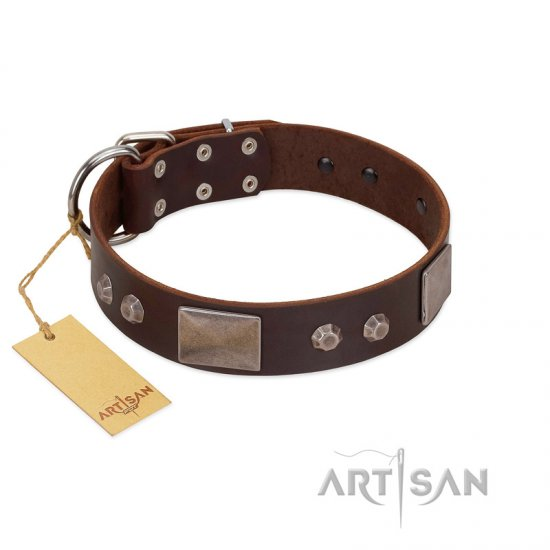 """Stone Stars"" Stylish Handmade FDT Artisan Brown Leather Bullmastiff Collar"
