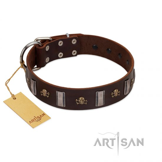 """War Chief"" FDT Artisan Genuine Brown Leather Bullmastiff Collar with Skulls and Plates"