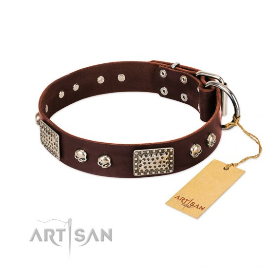 """Pirate Skull"" FDT Artisan Brown Leather Bullmastiff Collar with Old Silver Look Plates and Skulls"