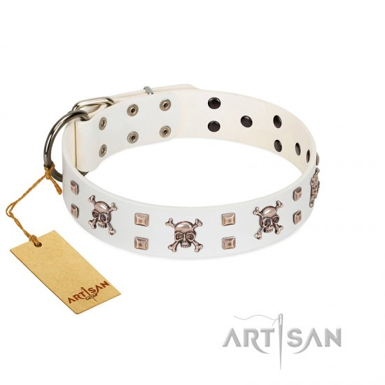 """Skull Island"" Premium Quality FDT Artisan White Designer Bullmastiff Collar with Crossbones and Studs"