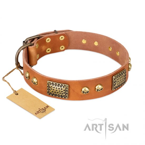 """Saucy Nature"" FDT Artisan Tan Leather Bullmastiff Collar with Old Bronze Look Plates and Skulls"