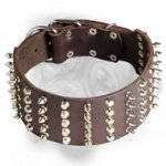 3 inch Spiked and Studded Bullmastiff Collar