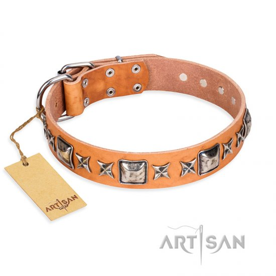 """Glamour Finery"" FDT Artisan Female Bullmastiff collar of natural leather with stylish old-looking circles"