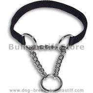 Superior Steel Chrome Plated Bullmastiff Martingale Collar - 4/5 inch (20 mm)