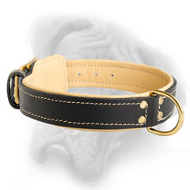 Classic Leather Bullmastiff Collar with Fur Protection Plate