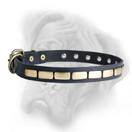 Royal Leather Bullmastiff Collar with Handset Brass Plates
