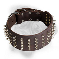 3 Inch Leather Bullmastiff Collar with 4 Rows of Nickel Spikes