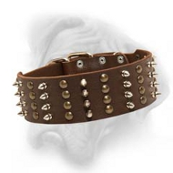 Wide leather dog collar with spikes and studs for stunning look of your Bullmastiff
