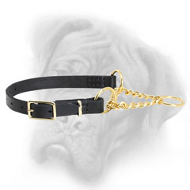 """Trustworthy Trainer"" Leather Martingale Bullmastiff Collar - 1/6 inch (4 mm)"