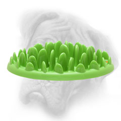"New ""Entertaining Green Tray"" - plastic feeder for your dearest Bullmastiff"