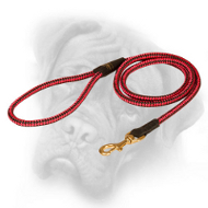 Fancy Cord Nylon Bullmastiff Leash with Brass Snap Hook