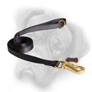 Professional Nylon Bullmastiff Leash for Walking, Training, Pulling, Tracking