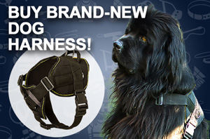 Nylon Bullmastiff Harness