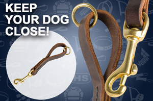 Leather Dog Leashr