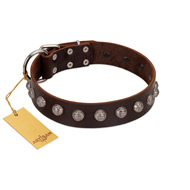 """Lucky Silver"" Designer Handmade FDT Artisan Brown Leather Bullmastiff Collar"
