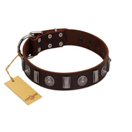 """Spiky Way"" FDT Artisan Brown Leather Bullmastiff Collar with Silver-Like Decorations"