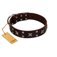 """Bigwig Woof"" FDT Artisan Brown Leather Bullmastiff Collar with Chrome Plated Stars and Square Studs"
