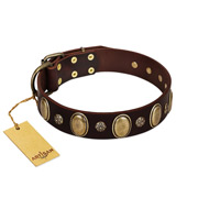 """Bronze Idol"" FDT Artisan Brown Leather Bullmastiff Collar with Eye-catching Ovals and Small Studs"