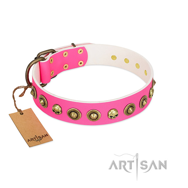 Trendy full grain leather dog collar with rust-proof adornments