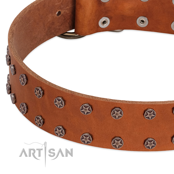 Trendy genuine leather dog collar for fancy walking