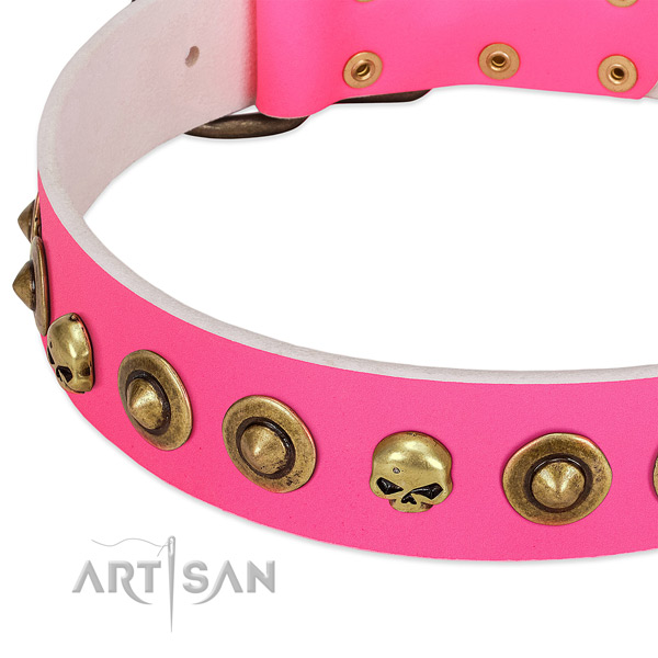 Unique adornments on leather collar for your four-legged friend